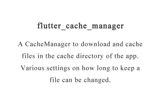 Generic cache manager for flutter