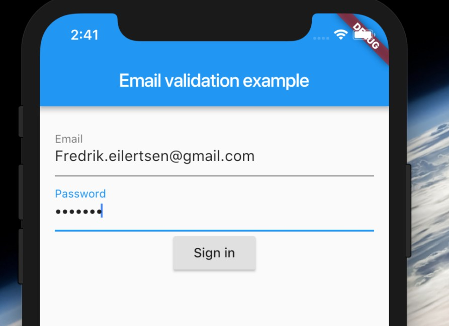 Simple app showing how to validate a email login form