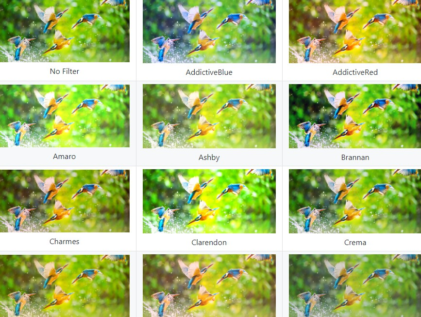 Photo Filters package for flutter